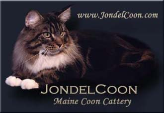 JondelCoon Maine Coons